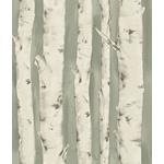 3118-12603 Birch and Sparrow Pioneer Birch Tree by Chesapeake Wallpaper