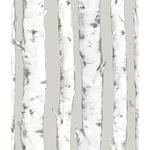 NHS3196 Downy Birch Nature Peel and Stick Wallpaper