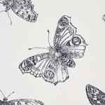 179430 Burnell Butterfly Black By Schumacher Fabric 3