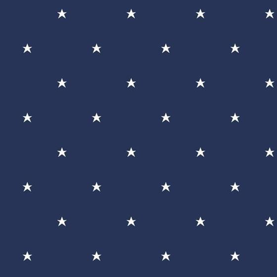 BS5479 Stars by York Wallcoverings