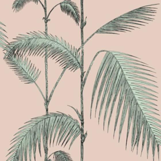 112/2005 Palm Leaves Plaster Pink/Mint Cole and Son