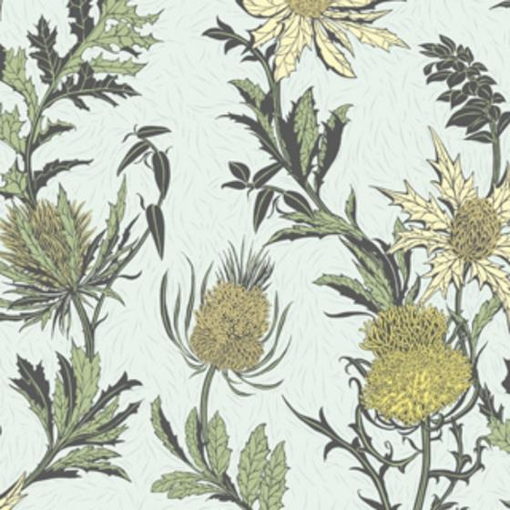 115-14042 Thistle, Lemon Olive D Egg Print by Cole