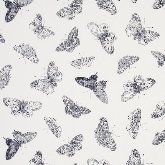 179430 Burnell Butterfly Black By Schumacher Fabric 1