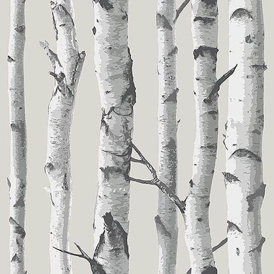 NU1650 Birch Tree Peel And Stick Wallpaper Peel an