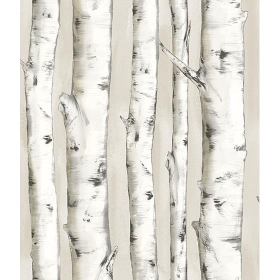3118-12601 Birch and Sparrow Pioneer Birch Tree by Chesapeake Wallpaper