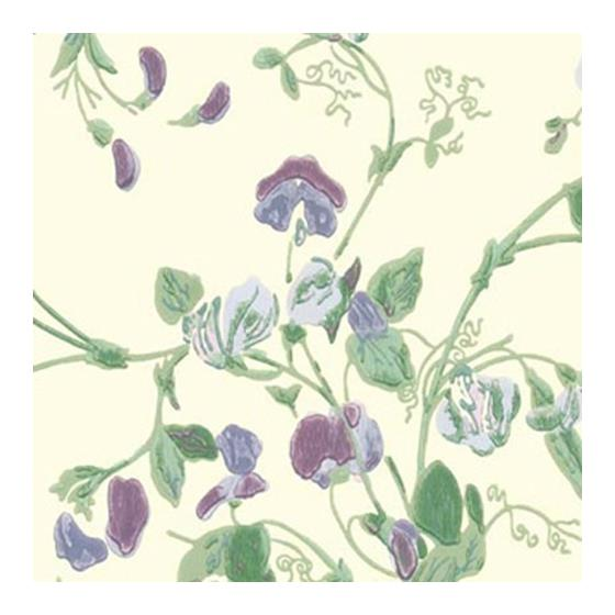 100/6030 Sweet Pea Cole and Son Wallpaper