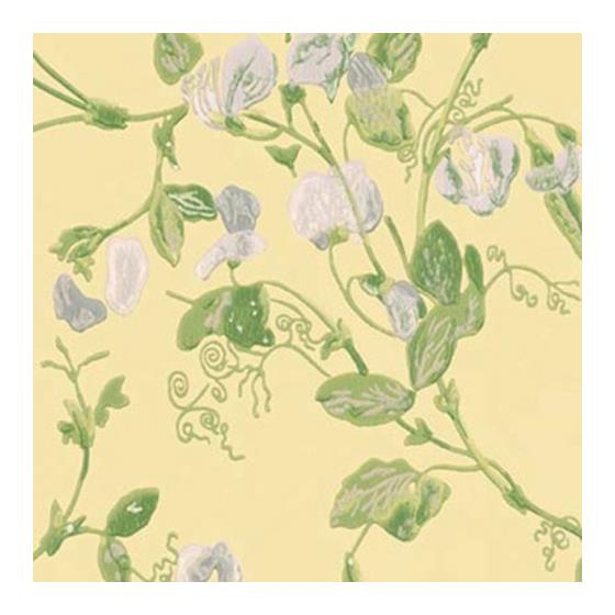 100/6029 Sweet Pea Cole and Son Wallpaper