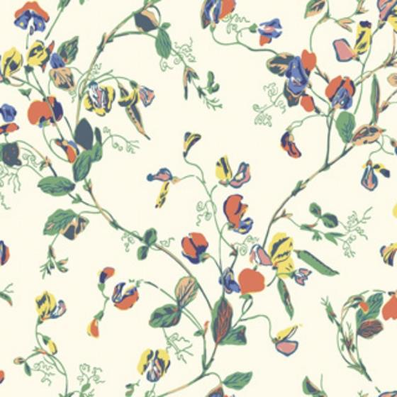 115-11032 Sweet Pea, Autumnal Mul Crm Print by Col