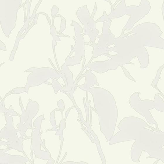 MM1724 Botanical Silhouette by York Wallcoverings