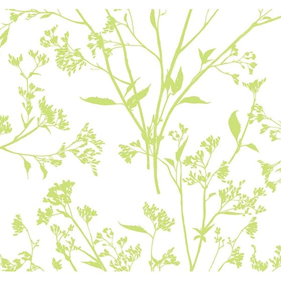 2927-80704 Newport Southport Chartreuse Delicate Branches by A-Street Prints Wallpaper