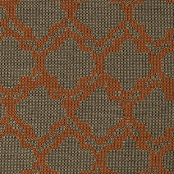 242361 Graphic Nature Coral by Robert Allen
