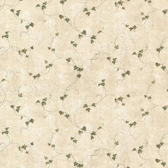 CTR21701 Countryside Sage Chesapeake